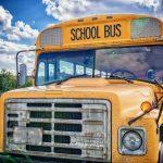 幼稚園バスのシートベルトに関する法令